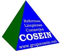 Logotipo COSEIN con dirección web y actividades
