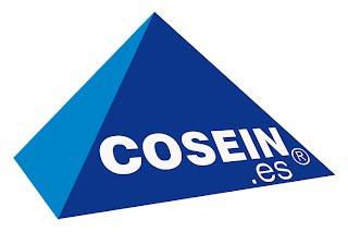 Logotipo COSEIN.es